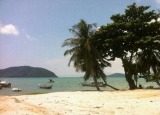 Beachfront Land Ready for you be ownership in Phuket